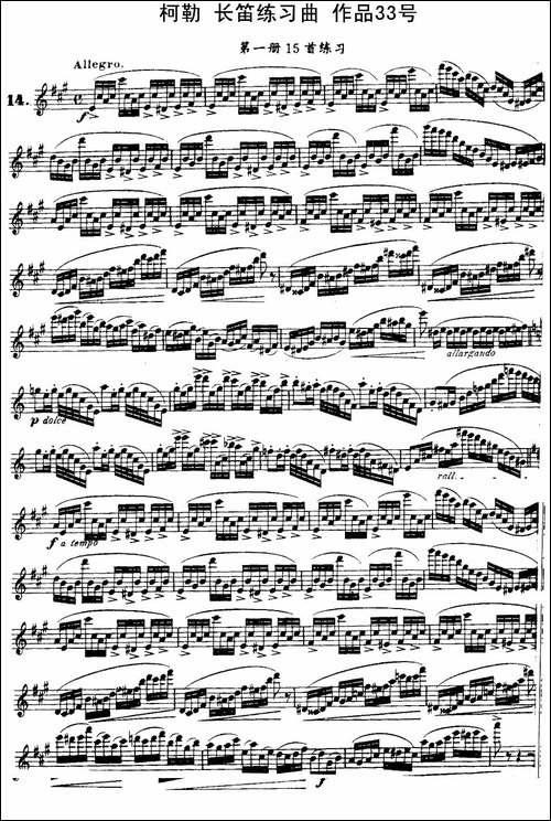 柯勒长笛练习曲作品33号-第一册-14-长笛五线谱 长笛谱
