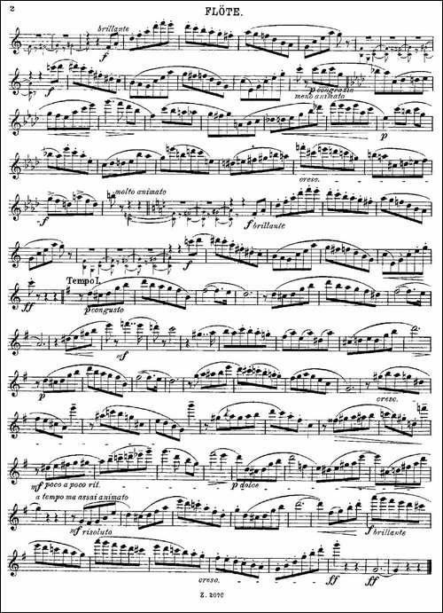 Walzer-Op.55-No.2-长笛五线谱 长笛谱