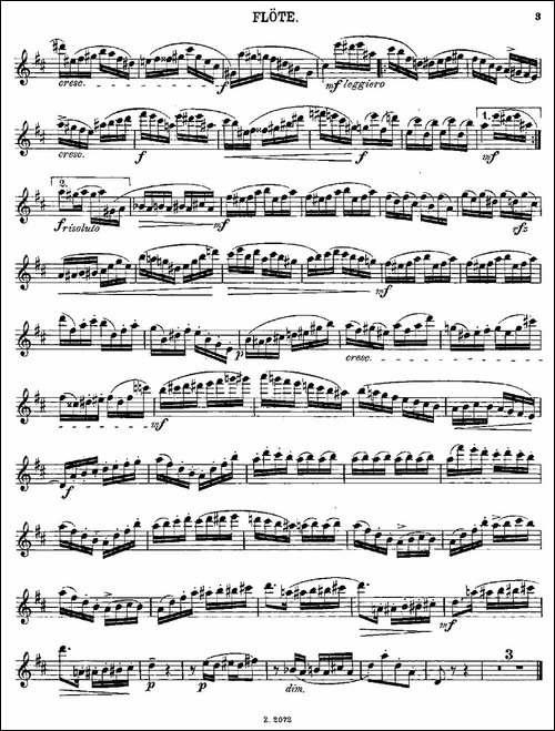 Die-Mühle-Op.55-No.4-长笛五线谱|长笛谱