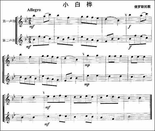 小白桦-重奏-长笛五线谱|长笛谱