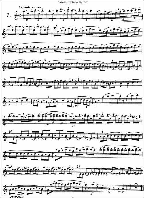 二十首练习曲作品132号之7-长笛五线谱|长笛谱