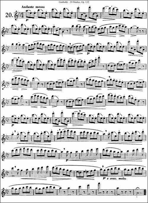 二十首练习曲作品132号之20-长笛五线谱 长笛谱