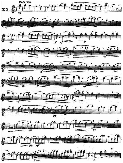 二十首练习曲作品131号-NO.3-长笛五线谱|长笛谱