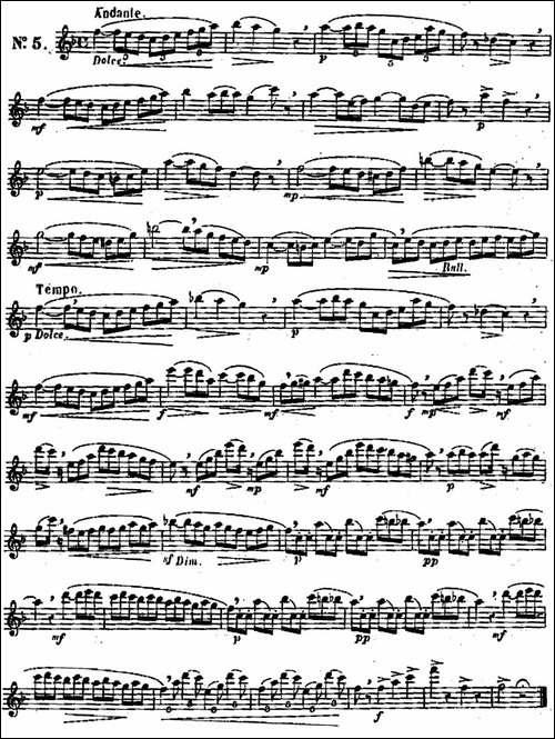 二十首练习曲作品131号-NO.5-长笛五线谱|长笛谱