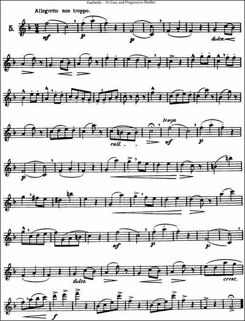 三十首基础及提高练习曲-NO.5-长笛五线谱 长笛谱