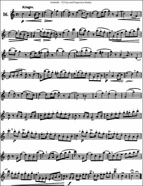 三十首基础及提高练习曲-NO.16-长笛五线谱|长笛谱