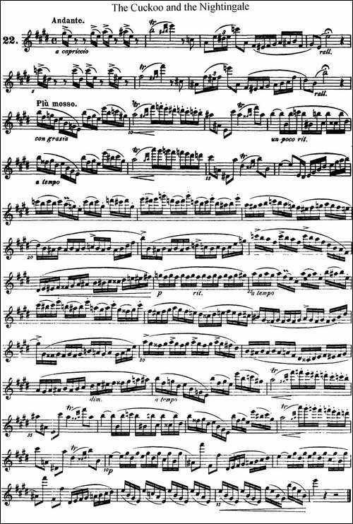 柯勒25首浪漫长笛练习曲作品66号-NO.22-长笛五线谱 长笛谱