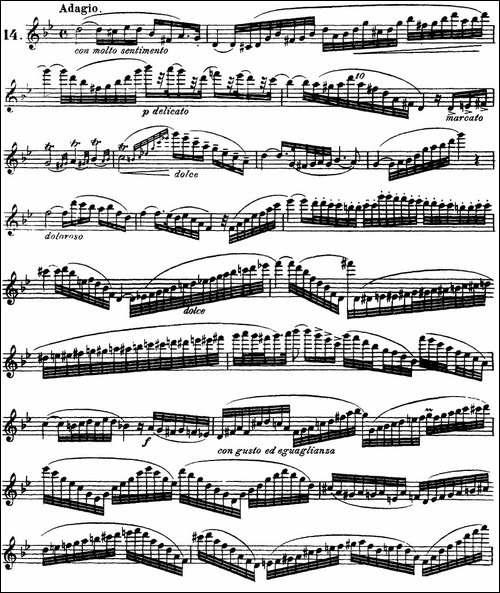 柯勒30首高级长笛练习曲作品75号-NO.14-长笛五线谱|长笛谱