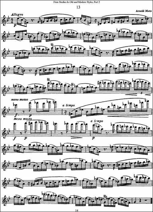 斯勒新老风格长笛练习重奏曲-第二-NO.13-长笛五线谱|长笛谱