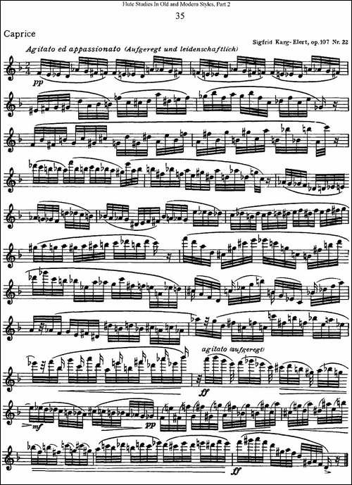 斯勒新老风格长笛练习重奏曲-第二-NO.35-长笛五线谱 长笛谱