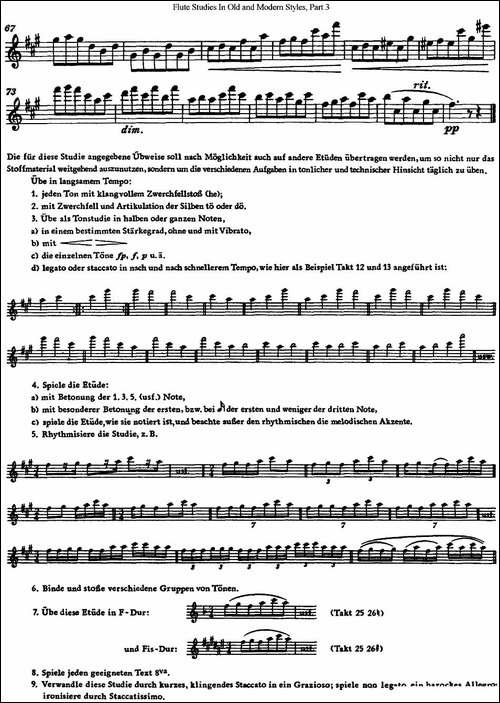 斯勒新老风格长笛练习重奏曲-第三-NO.28-长笛五线谱|长笛谱