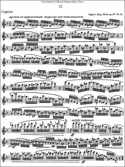 斯勒新老风格长笛练习重奏曲-第四-NO.22-长笛五线谱|长笛谱