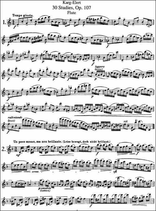 卡-伊勒特30首长笛练习曲Op.107-NO.1-NO.3-长笛五线谱 长笛谱