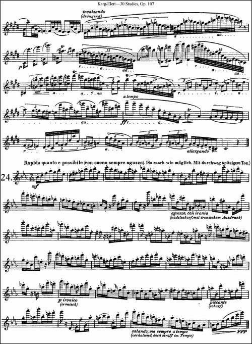 卡-伊勒特30首长笛练习曲Op.107-NO.22-NO.24-长笛五线谱 长笛谱