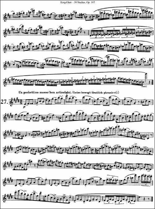 卡-伊勒特30首长笛练习曲Op.107-NO.25-NO.27-长笛五线谱|长笛谱