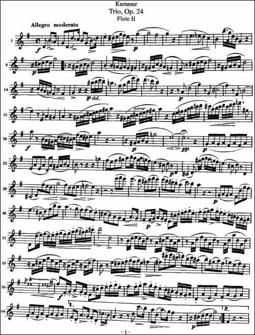 库默长笛三重奏Op.24-Flute-2-长笛五线谱|长笛谱