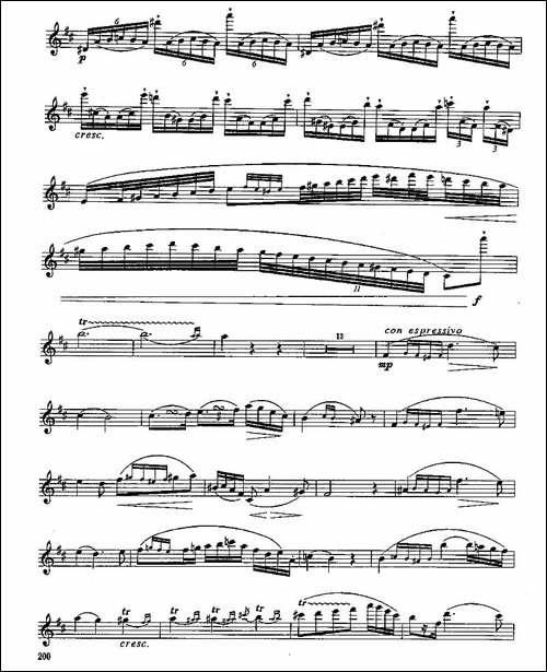 长笛九级考级曲谱-第四—2-长笛五线谱|长笛谱