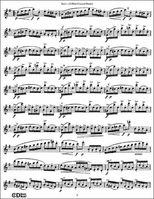 Bach-24-Flutc-Concert-Studies-之1—5-巴赫-长笛五线谱 长笛谱