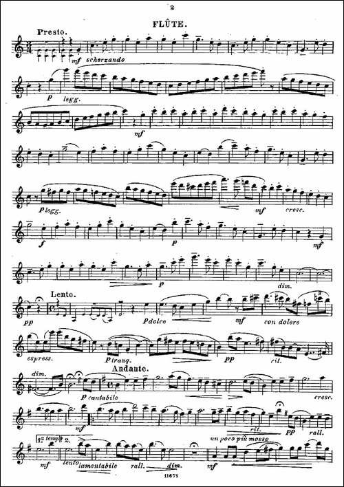 Fantaisies-nationales.-Op.-59,-2.--长笛五线谱 长笛谱