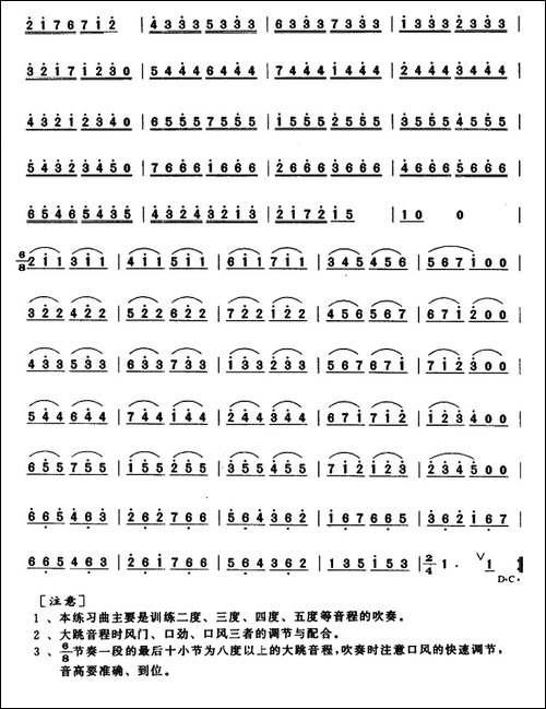 笛子连分音大跳练习-笛箫简谱|笛箫谱